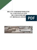 Bilant Energetic Cogenerare