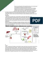 Renin Adalah Suatu Enzim Protein Yang Dilepaskan Oleh Ginjal Bila Tekanan Arteri Turunsangat Rendah