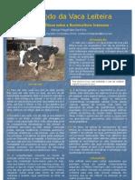 O fardo da vaca leiteira - Questões éticas sobre a Bovinicultura Intensiva