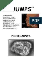Baca Mumps