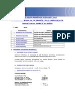 Informe Diario ONEMI MAGALLANES 19.08.2014.pdf