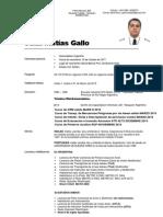 Curriculum GALLO Foto 17-08-2014 CV