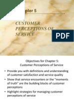 Consumer Perceptions of Service
