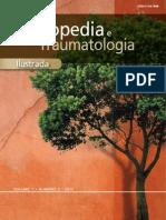 Revista Ortopedia Ilustrada Ilustrada v1 n3