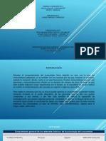 102604-23-yeiny_perez-trabajo_colaborativo_1 (1)