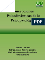 Concepciones Psicopatológico - Copia (2)