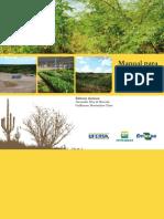 Manual Para Recuperação de Áreas Degradadas Por Extração de Piçarra Na Caatinga