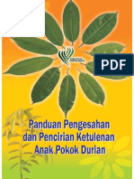 Panduan Pengesahan Dan Pencirian Ketulenan Anak Pokok Durian