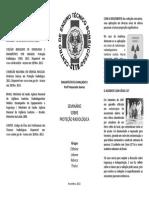 Folder Seminário Prof Alexandre