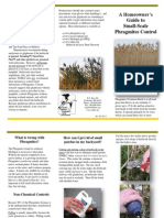 Homeowners Guide to Phragmites Control