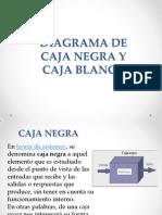 diagrama-caja negra y blanca