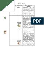Roles Trabajo Colobarativo Grupo 198