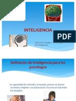 Diferentes Tipos de Inteligencia