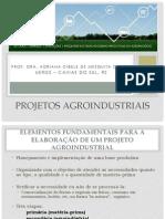 Projetos Agroindustriais Aula 1