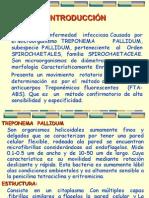 Treponema Pallidium