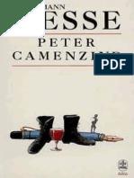 Hesse Peter Camenzind