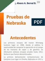 Pruebas de Nebraska.pdf