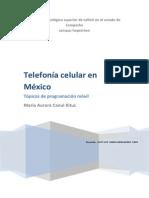 ISC_Canul Kituc_La Telefonía Celular en México_7