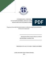 Programa de Desarrollo Profesional Orientado a La Eficiencia Energética Para Ingenieros Constructores