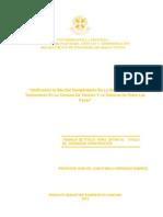 Verificación in Situ Del Cumplimiento de La Norma Térmica en Techumbres en La Comuna de Temuco Y La Comuna de Padre Las Casas