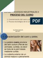 Proceso Del Cuero