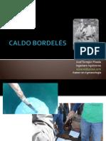 Caldo Bordelés.pdf