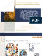 Consequências Da Ação Antrópica Nos Ecossistemas e Na Biodiversidade – o Antropceno