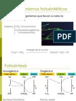 U3d MicroorganismosFotosinteticos a 20263