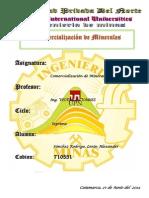 Informe Visita Algamarca