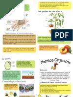 diptico3.pdf