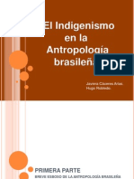 Antropología Brasil