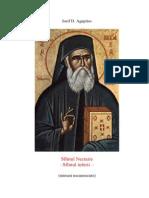 Iosif Agapitos Sfantul Nectarie Sfantul Iubirii