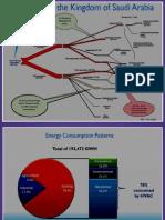 Saudi - Energy Options