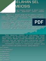 KP 4.12 Perbanyakan Sel (Meosis)_ by Dr. Husna Sp.pk