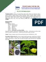 Offer - Vegetable Musk Oils (Ambrette seed oils)