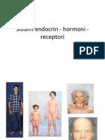 Sistem Endocrin  Hormoni  Receptori