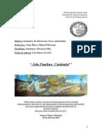 Estebanez, Florencia Elba. Isla Paulino, Cuidenla.