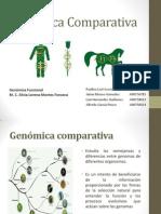 genomica comparativa