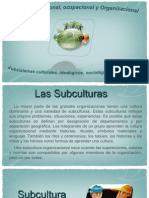 99164351-Subculturas-Organizacionales
