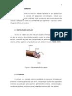 TCC CORRIGIDO Pronto Para Imprimir