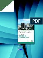 Diagnóstico Participativo Del Cluster de Punta Del Este