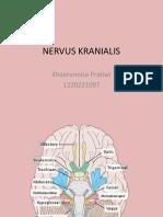 Nervus Kranialis