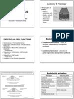 Cardiovascular + Clinical Scenarios