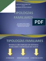 TIPOLOGÃ AS+FAMILIARES+AIEP