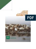 Guia de Atencion Enfermera a Personas Con Diabetes