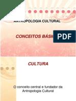antropologiaconceitosbasicos-110418200257-phpapp02