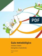 Guia Metodologico 2012