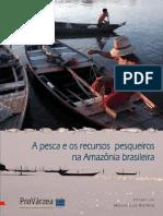 A Pesca e Os Recursos Pesqueiros Na Amazonia
