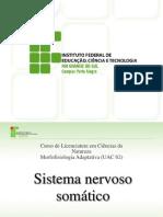 Sistema Nervoso Somático 1