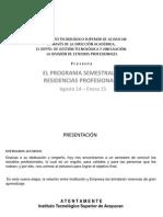 Resid Profesional Formatos